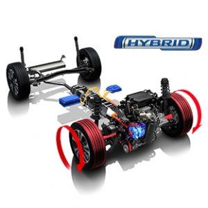 Vitara_Hybrid_Rovigo_Seren_Automobili